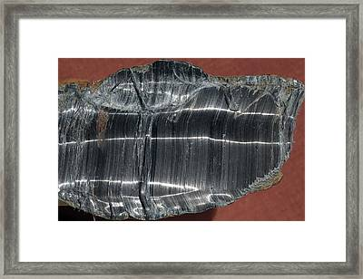 Crocidolite Asbestos Mineral Framed Print by Dirk Wiersma