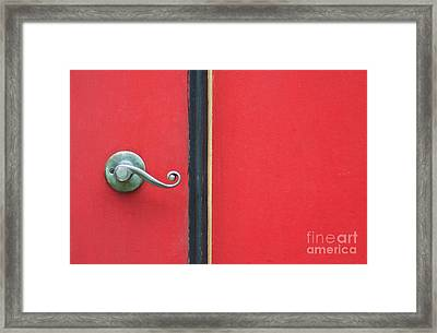 Curly Framed Print by Dan Holm