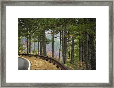 Curve In The Road Framed Print by Cindy Rubin
