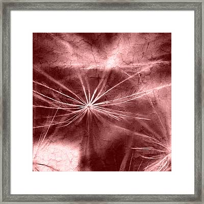 Dandelion Art Picture Framed Print by Falko Follert
