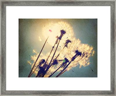 Dandelions For You Framed Print by Amy Tyler