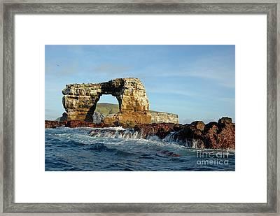 Darwin's Arch Framed Print by Sami Sarkis