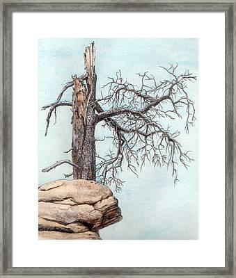 Dead Tree Framed Print by Inger Hutton