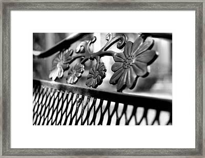 Decorative Framed Print by JAMART Photography