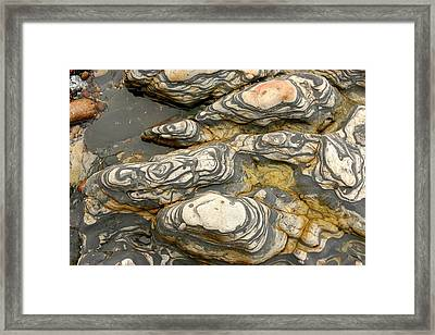 Detail Of Eroded Rocks Swirled Framed Print by Charles Kogod