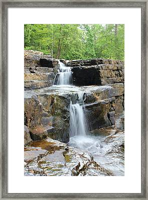 Framed Print featuring the photograph Dismal Falls II by Laurinda Bowling