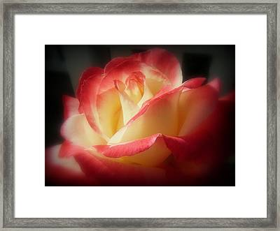 Double Delight Framed Print by Kevin Moore