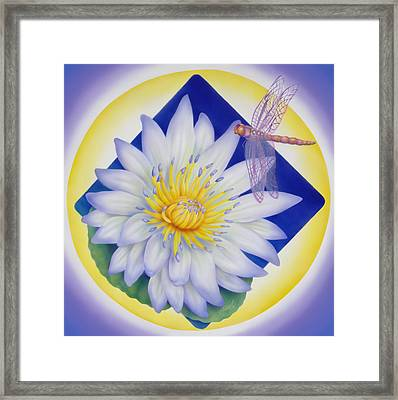 Dragonfly And Waterlily Framed Print by Marcia  Perry