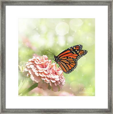 Dreamy Monarch Butterfly Framed Print