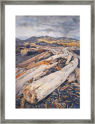 Driftwood Gathering Framed Print by Leslie Redhead