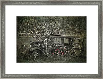 Driven To Find Love  Framed Print by Jerry Cordeiro