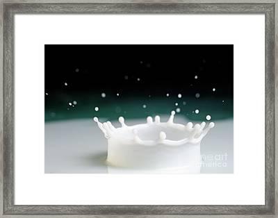 Drop Of Milk Splashing Framed Print by Sami Sarkis