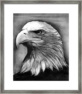 Eagle Framed Print by Jerry Winick