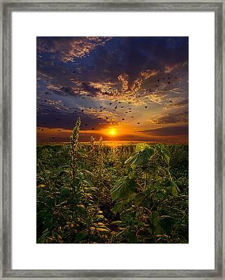 Early Bird Special Framed Print by Phil Koch