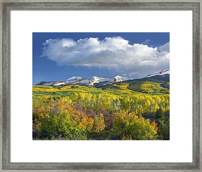 East Beckwith Mountain Flanked By Fall Framed Print by Tim Fitzharris
