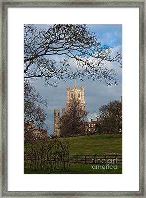 Ely Cathedral  Framed Print by Andrew  Michael