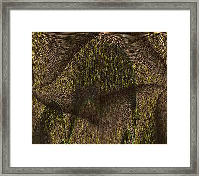 Eris Framed Print by Christopher Gaston
