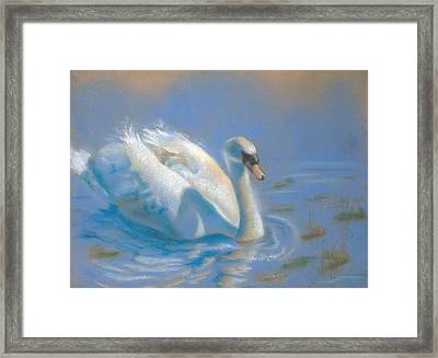 Evening Stroll Framed Print by Joanna Gates