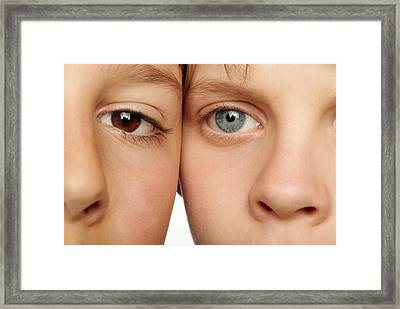 Eye Colour Framed Print by Mauro Fermariello