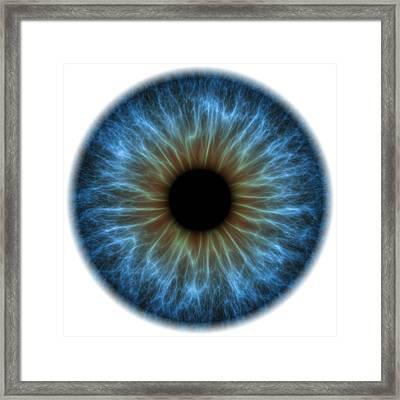 Eye, Iris Framed Print by Pasieka