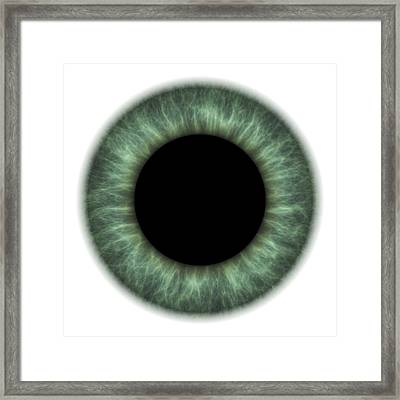 Eye Framed Print by Pasieka