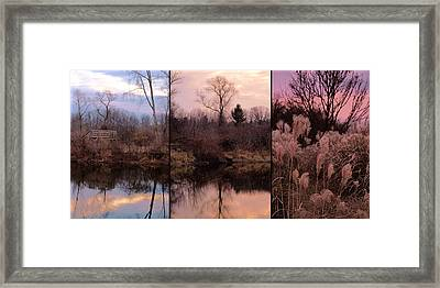 Fading Light Framed Print by Christy Woods
