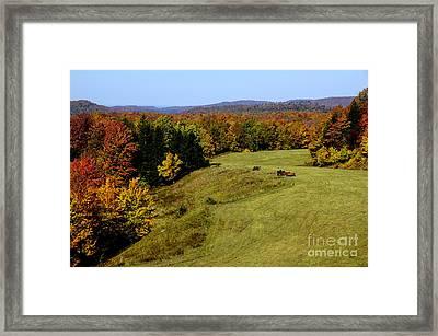 Fall Color Randolph County West Virginia Framed Print by Thomas R Fletcher