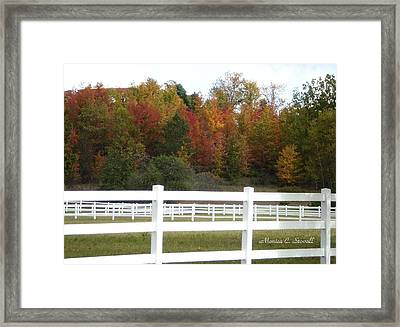Fall Colors Collection - Michigan Framed Print