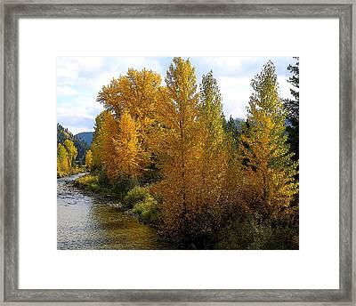 Framed Print featuring the photograph Fall Colors by Steve McKinzie