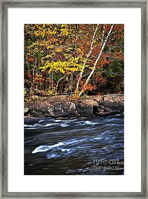 Fall Forest And River Landscape Framed Print by Elena Elisseeva