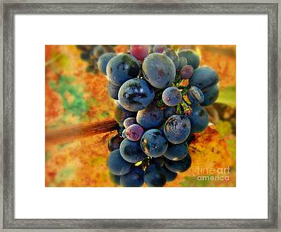 Fall Harvest Framed Print by Kevin Moore