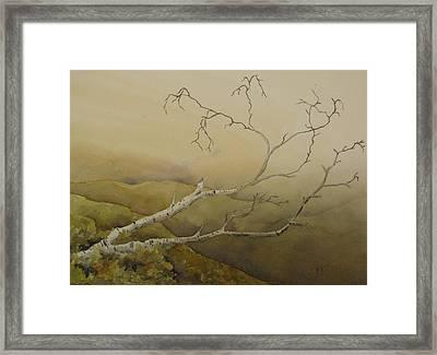 Fallen Framed Print by Ramona Kraemer-Dobson