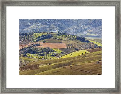 Farmland Near Casabermeja, Spain. Framed Print by Ken Welsh