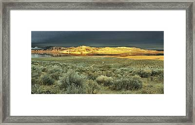 Favorite Neighborhood Place Framed Print by SB Sullivan