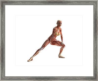 Female Muscles, Artwork Framed Print by Sciepro