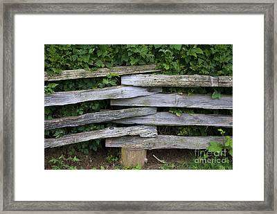 Framed Print featuring the photograph Fence Weave by Bill Thomson