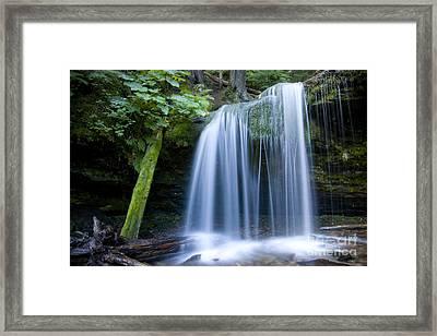 Fern Falls Framed Print by Idaho Scenic Images Linda Lantzy