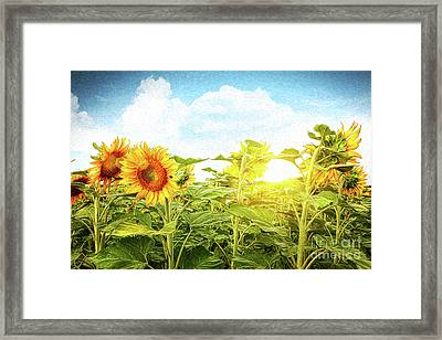 Field Of Colorful Sunflowers/digital Painting   Framed Print by Sandra Cunningham