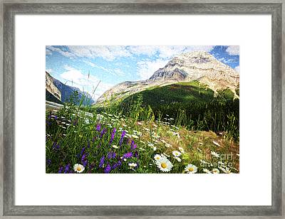 Field Of Daisies And Wild Flowers/digital Painting  Framed Print by Sandra Cunningham