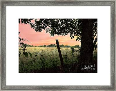 Field Of Dreams Framed Print