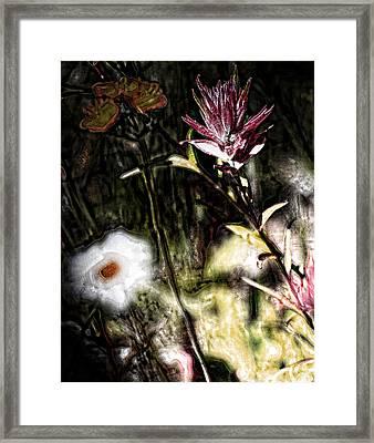 Field Of Feelings  Framed Print by Jerry Cordeiro