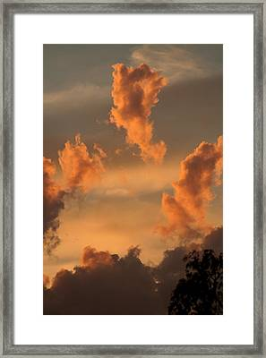 Fiery Floaters Framed Print