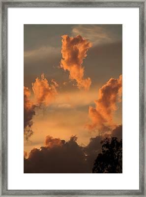 Fiery Floaters Framed Print by Louise Mingua