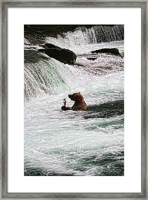 Fishing-5 Framed Print