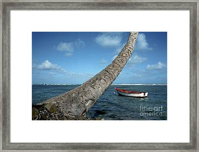 Fishing Boat And Palm Trunk Framed Print by Thomas R Fletcher