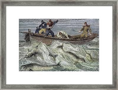 Fishing For Narwhals Framed Print by Granger