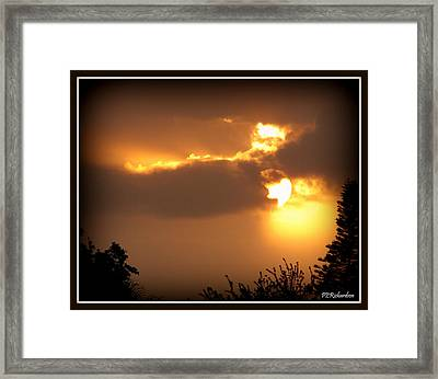Flare Framed Print by Priscilla Richardson