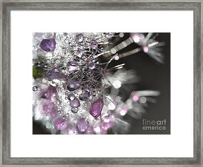 Fleur De Cristal Framed Print by Sylvie Leandre