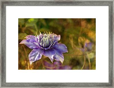 Floating In The Garden Framed Print