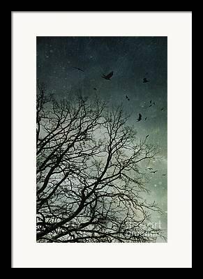 Emptyfall Framed Prints
